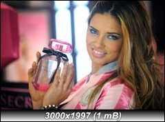 http://i3.imageban.ru/out/2010/09/22/6cbfa75bfdadf152bd581849e0b331c1.jpg