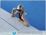 http://i3.imageban.ru/out/2011/04/04/52baf0f5384139706e8d05c718d06a86.jpg