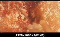 http://i3.imageban.ru/out/2011/05/10/31692506c73ec0b19cc9299f3e794685.jpg