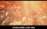 http://i3.imageban.ru/out/2011/05/10/3e1d387c973179f4df4beb984c545cf5.jpg