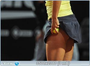 http://i3.imageban.ru/out/2011/05/15/b6ce46c13b762e70b9ec2e45039680c5.jpg