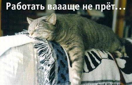 Лень лениться, не то чтоб шевелиться...
