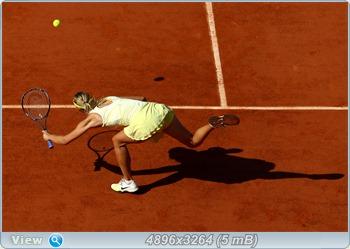 http://i3.imageban.ru/out/2011/06/01/89bbaaebc19e12a96c21fe549484477d.jpg