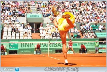 http://i3.imageban.ru/out/2011/06/03/057a68db5556c82e279d3d95b655525c.jpg