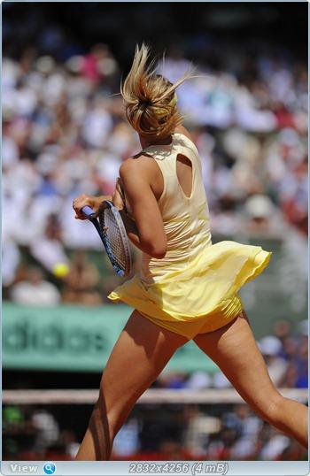 http://i3.imageban.ru/out/2011/06/03/c6470fc1407846a2934bd6bc4f481470.jpg