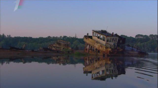 Радиоактивные волки Чернобыля / Radioactive WOLVES / 2011 / SATRip