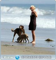 http://i3.imageban.ru/out/2011/06/14/9206a52bb01480a1cd1b488e3a560f00.jpg