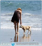 http://i3.imageban.ru/out/2011/06/14/f3a6a9dd7113235105f96950e299b99b.jpg