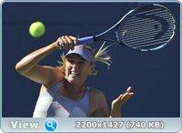 http://i3.imageban.ru/out/2011/08/30/f172ed3753fff0861b34bca39f736b18.jpg