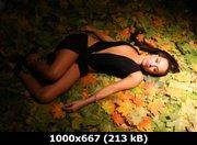 https://i3.imageban.ru/out/2011/09/11/76c19db29f8282cdece3896c3a48d94a.jpg