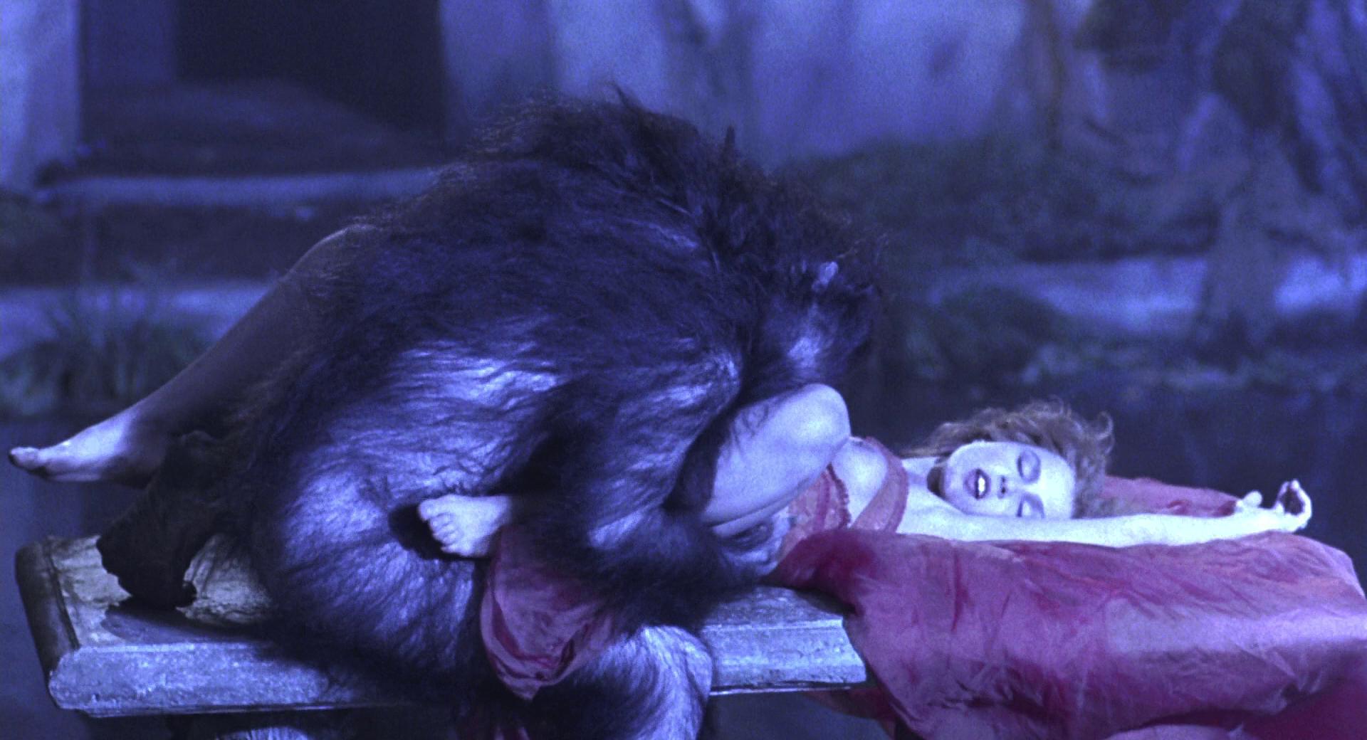 Сэкс с обезьянами 4 фотография