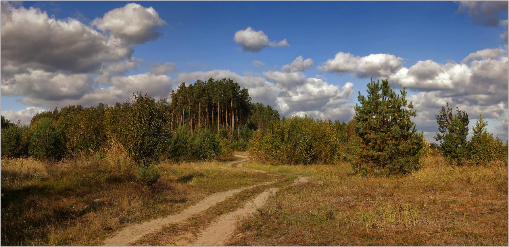 http://i3.imageban.ru/out/2011/10/02/64b55b6fc9b14875b4ea922972dfcd3e.jpg