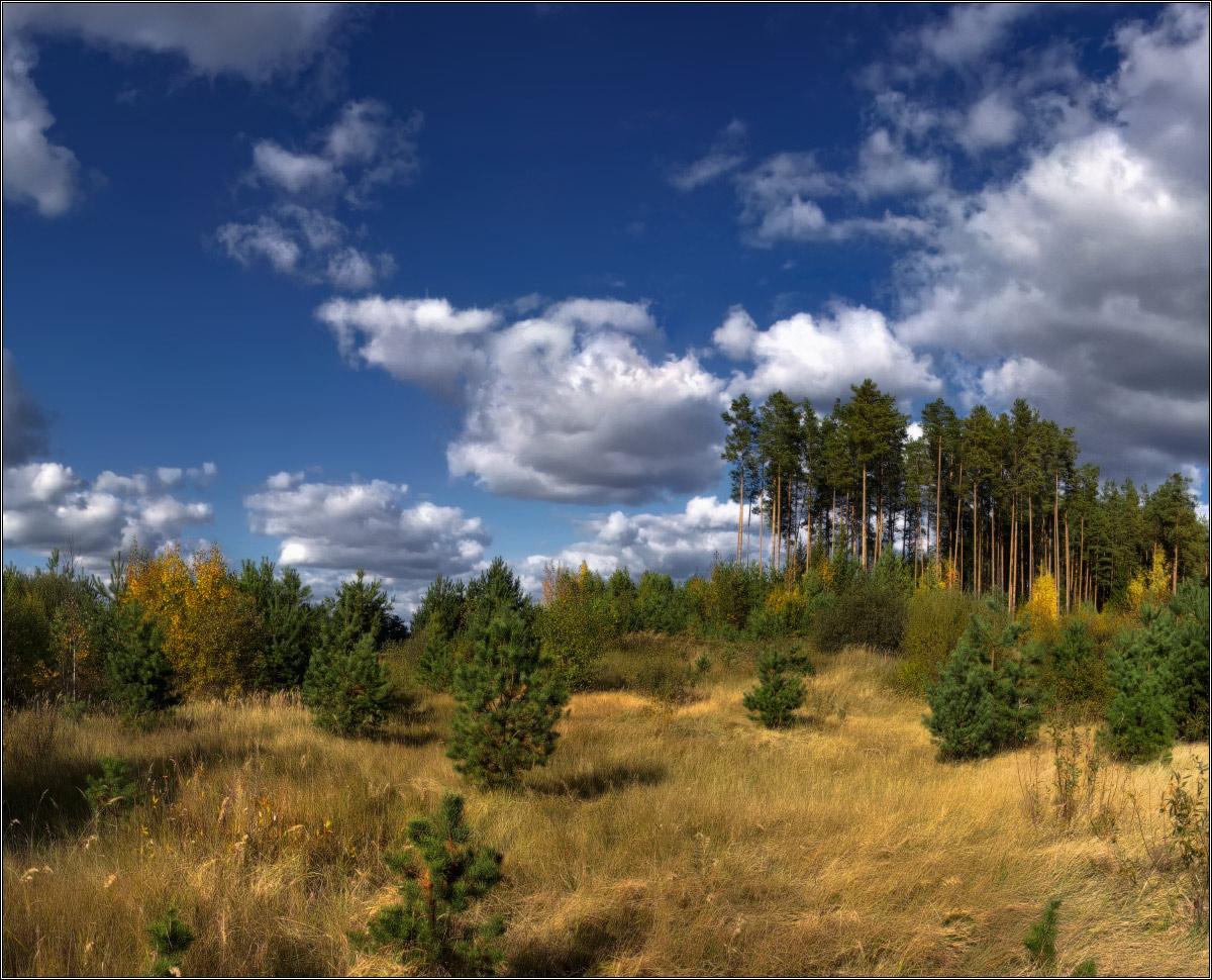 http://i3.imageban.ru/out/2011/10/03/4cfcab8cd9d44c58fd1c2c5297083a0b.jpg