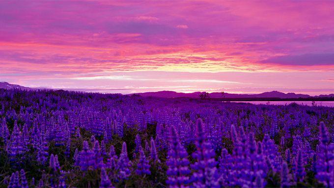 Исландия,снято в HD.