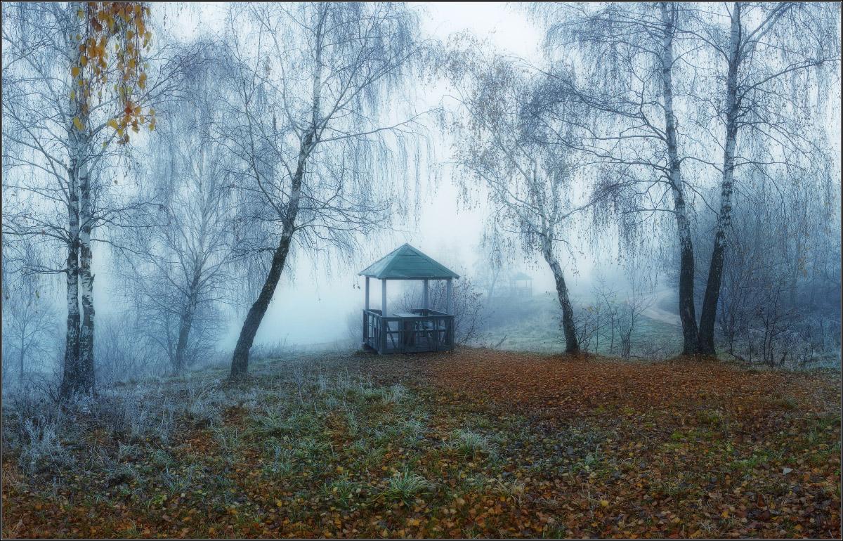 http://i3.imageban.ru/out/2011/11/05/083bf1c70fb8ccb822b639905ec2bcbb.jpg