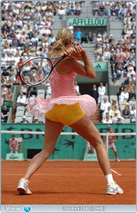http://i3.imageban.ru/out/2011/12/03/5ddcfad4f3ec534c35ebace680f780bd.jpg