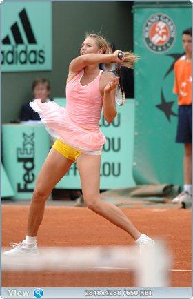 http://i3.imageban.ru/out/2011/12/03/9525d79f61bccb3ddc3424040e573a7f.jpg