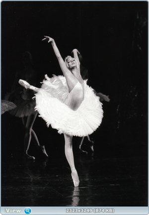 http://i3.imageban.ru/out/2011/12/23/551f2ed0a6ad091b0d2104ed6da88c6a.jpg