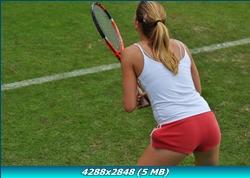 http://i3.imageban.ru/out/2011/12/26/5e6f953c01b726c909f4755b7013e84a.jpg