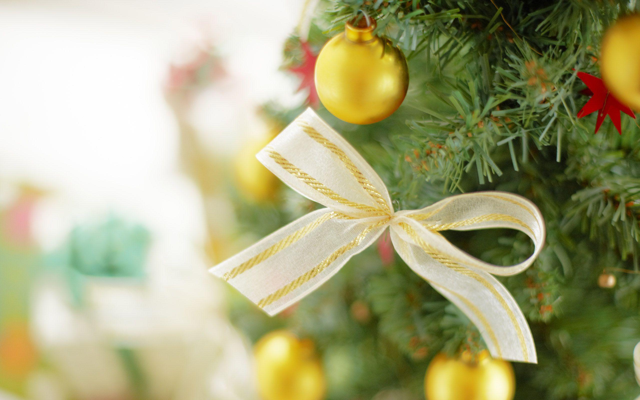 http://i3.imageban.ru/out/2011/12/27/abb67e743321e2e0b0b12ec6f804691b.jpg
