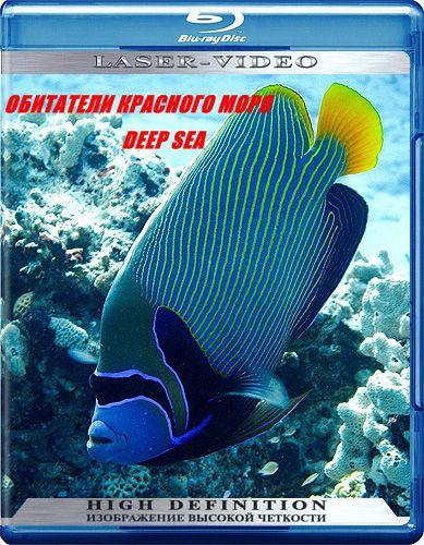 Обитатели красного моря 3 части deep sea