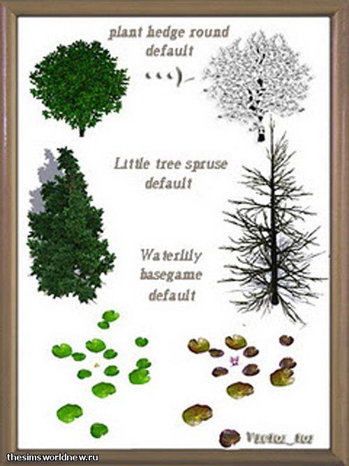 default plants 2.jpg