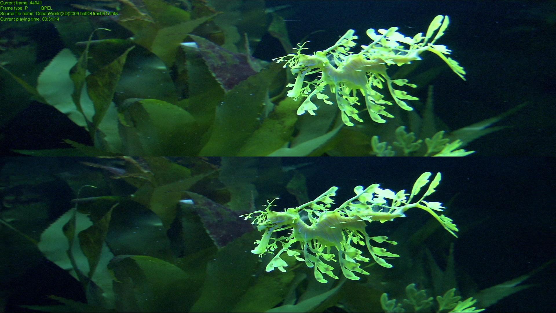 OceanWorld-08.png