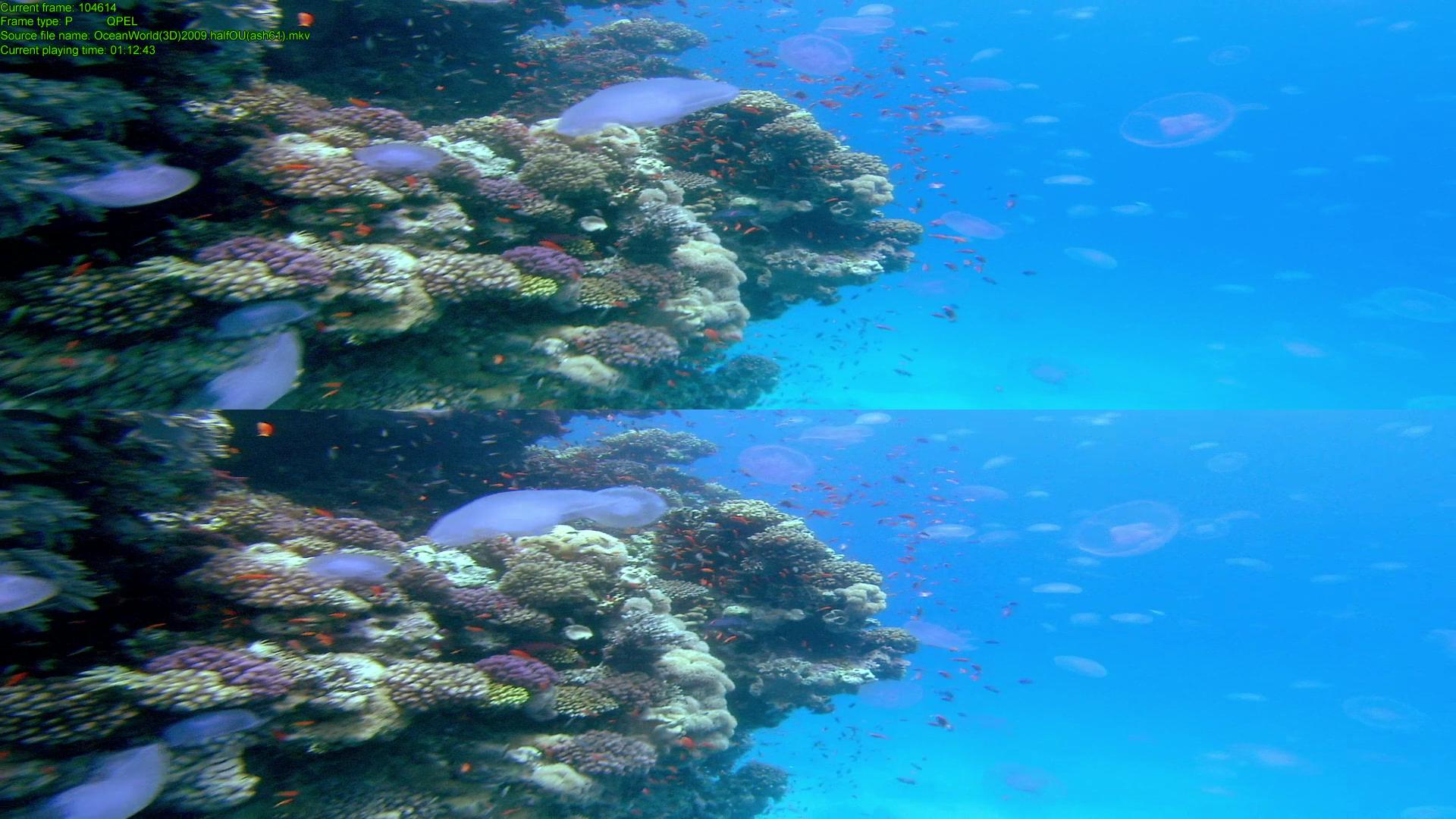 OceanWorld-14.png