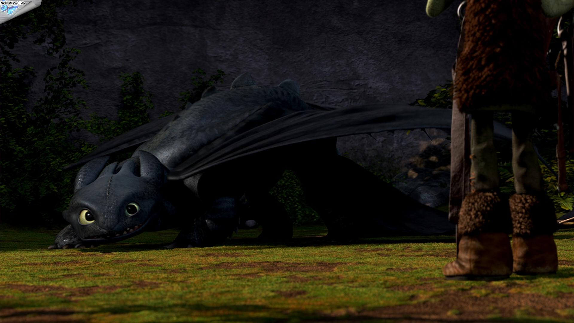 Смотреть мультфильм Драконы: Подарок ночной фурии онлайн в хорошем 75