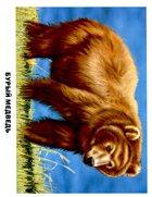 Обучающие карточки: Животные России