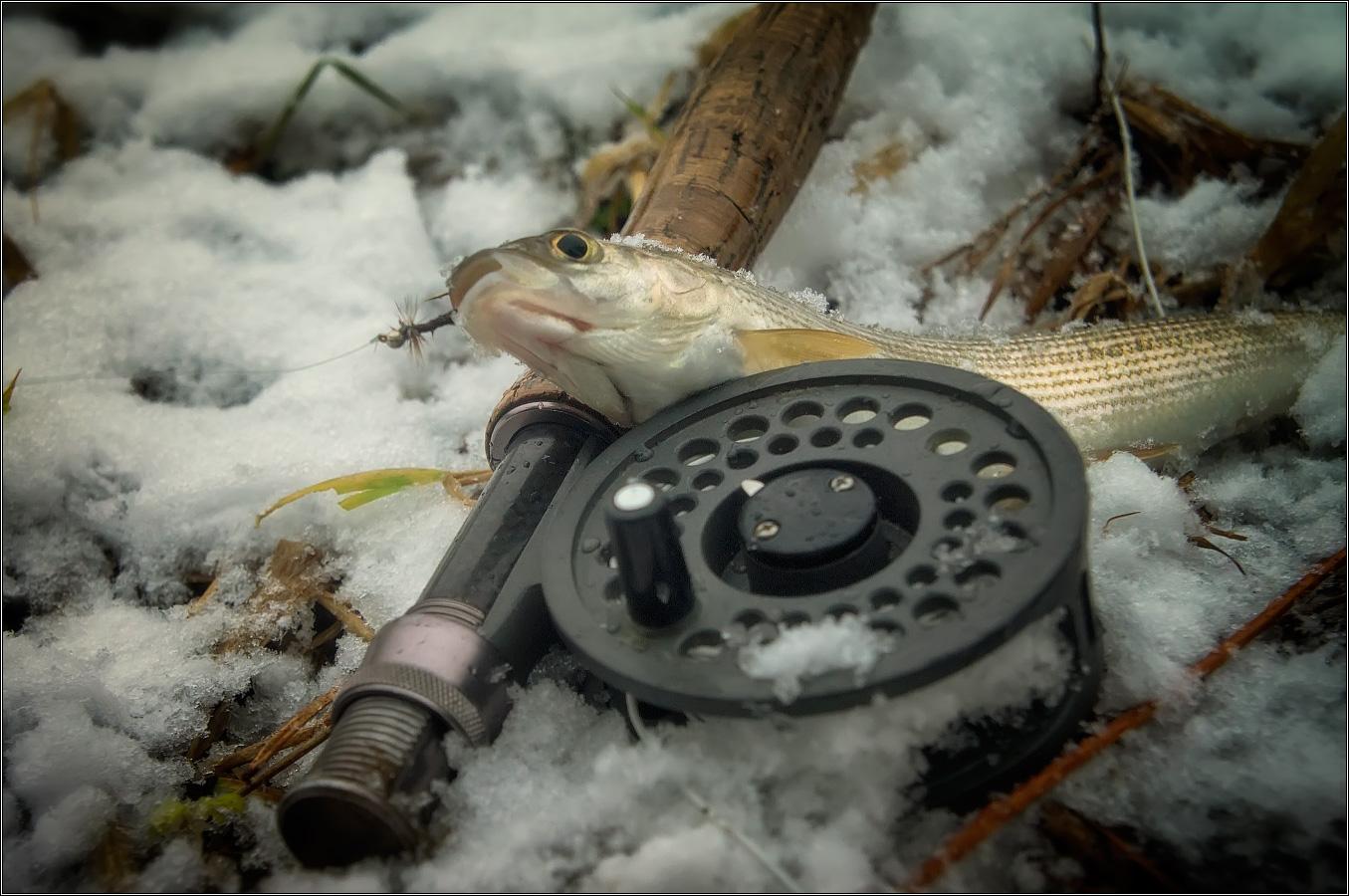 http://i3.imageban.ru/out/2012/11/25/cc92b40196075b2a3f1a61e14f3afb5a.jpg