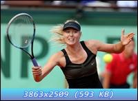 http://i3.imageban.ru/out/2012/12/11/60d3fca0290712a680e351153d354fc6.jpg