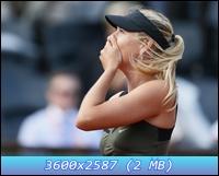 http://i3.imageban.ru/out/2012/12/11/7789316d22f80a02ba98531b8a854056.jpg