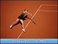 http://i3.imageban.ru/out/2012/12/11/a2f3ab9c9eba3ff0d3a921a297c6f4af.jpg