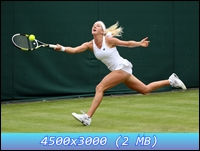 http://i3.imageban.ru/out/2012/12/12/719f6cd90572051c2485c397731495ee.jpg