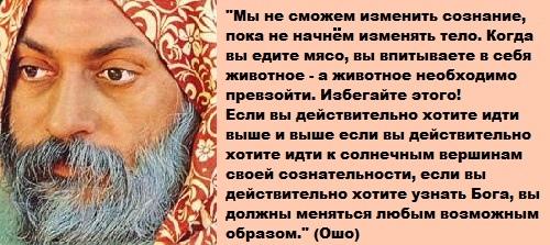 http://i3.imageban.ru/out/2013/06/24/eb581bd1d4e43f0826f671e0932d2a81.jpg