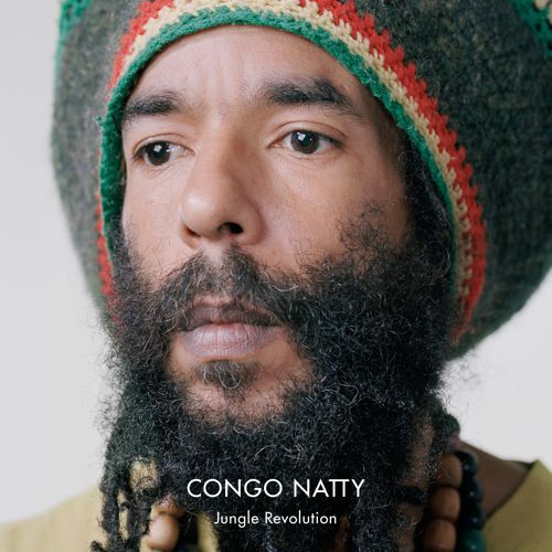 (Drum & Bass, Jungle)(Big Dada [BDDNL 227 ]) Congo Natty - Jungle Revolution - 2013 (WEB), FLAC (tracks) , lossless