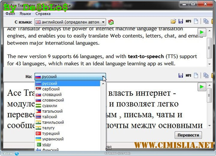 Ace Translator 10.6.2 [2013 / MULTI / RUS]