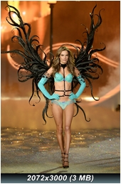 http://i3.imageban.ru/out/2013/11/15/780db03707607db5c10fcfab69f7a3d2.jpg