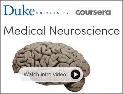 DUKE University Coursera - Medical Neuroscience