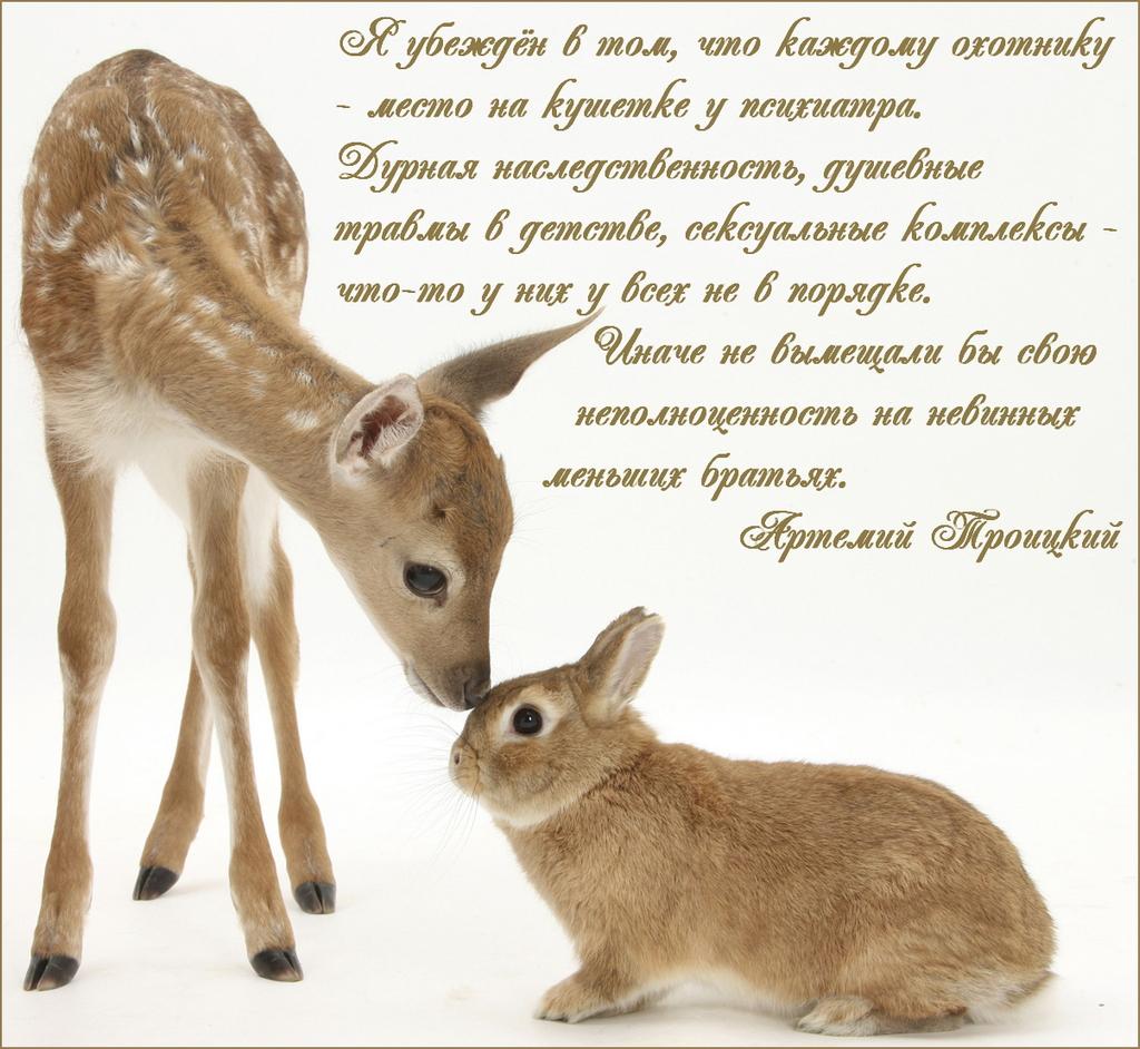 Артемий Троицкий_2.jpg
