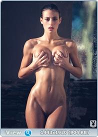 http://i3.imageban.ru/out/2014/01/06/effc81645c9c0c73160d1761e3a06842.jpg