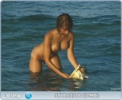 http://i3.imageban.ru/out/2014/01/07/0c49c6898b564e9808c3b2c8c9512655.jpg