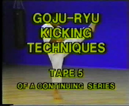 Higaonna - Mastering Traditional Okinawan Goju-Ryu Karate Series