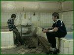 На мосту (2008) DVDRip