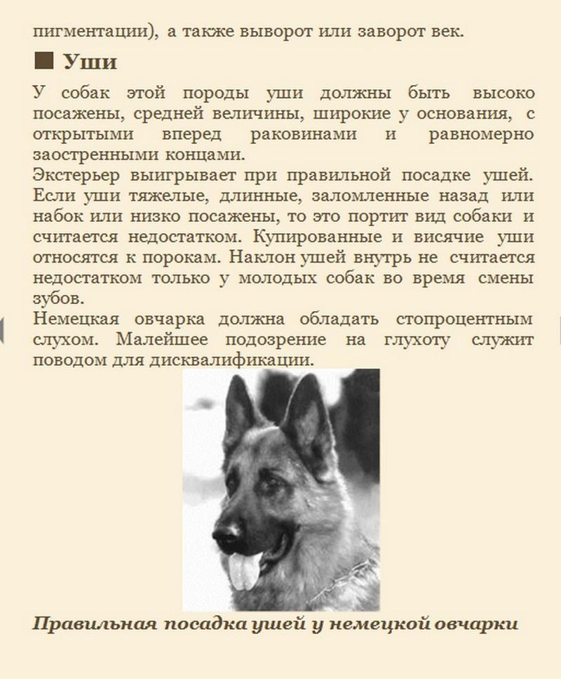 http://i3.imageban.ru/out/2014/01/22/489b40ba150237f242b9dffd20f7c13c.jpg