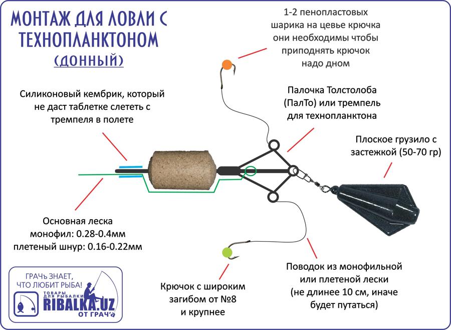 рецепт технопланктона для пресса видео