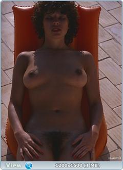 http://i3.imageban.ru/out/2014/01/31/edd5d32ed2cb4451053eabe5f4129433.jpg