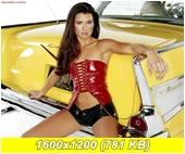 http://i3.imageban.ru/out/2014/02/02/0f93c49f2de1c99fbc9dd8e7343d63be.jpg