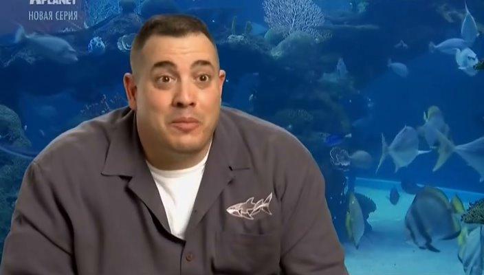 конторы Северо-Западном аквариумный бизнес 1 серия статистике